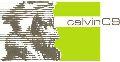 Die Vorbereitungen zum Calvin-Jahr laufen gut